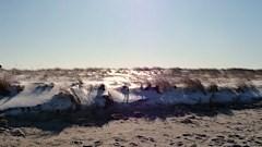Frozen+Dune+Jan+15