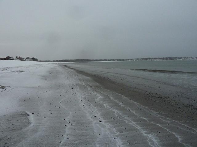 Gray beach scene February 8 2015