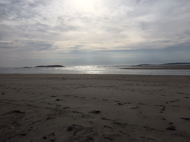 An expansive Popham Beach on January 31.