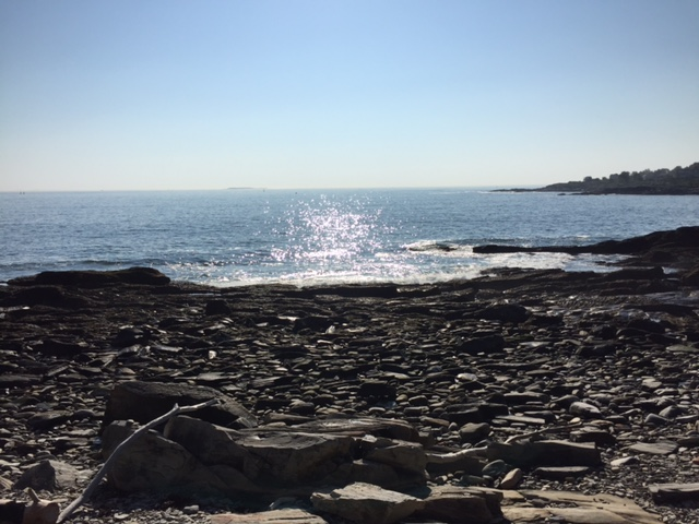 A favorite spot on Peaks Island, a short walk from the cottage where I holed up and wrote for a week.
